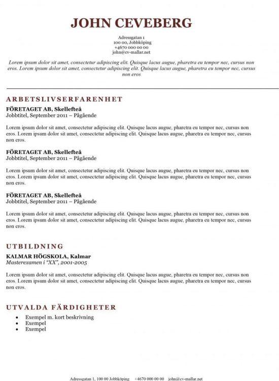 Klassisk CV-mall - pedagog