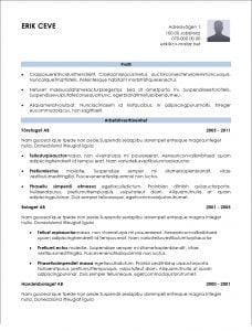 Informativ CV mall