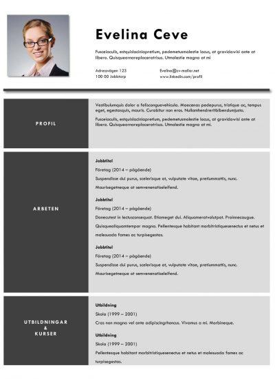 Snygg CV-mall för ekonomiassistent