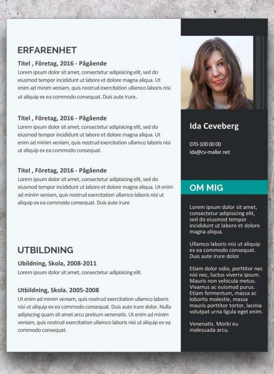 Modern och enkel CV mall