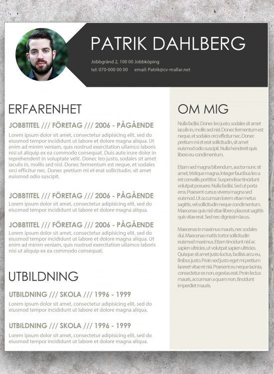 Perfekt CV
