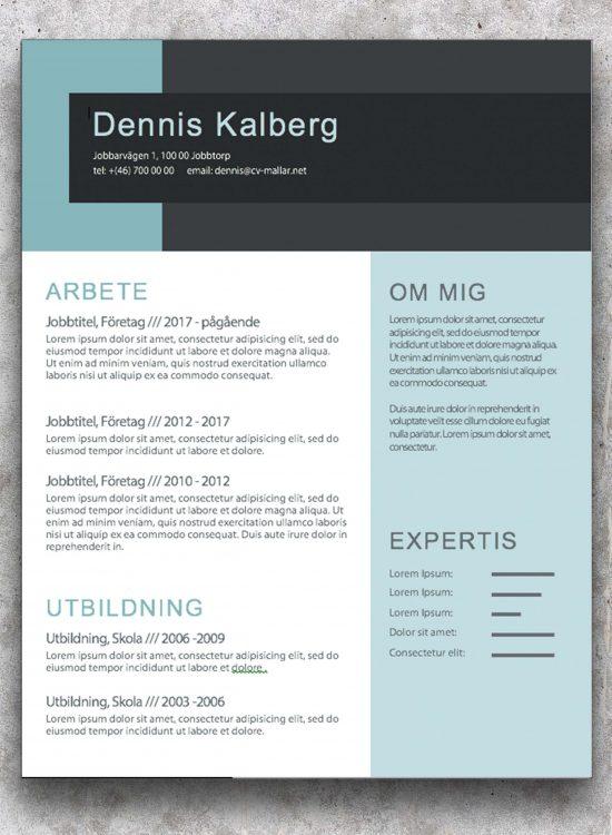 Jobbansökan CV