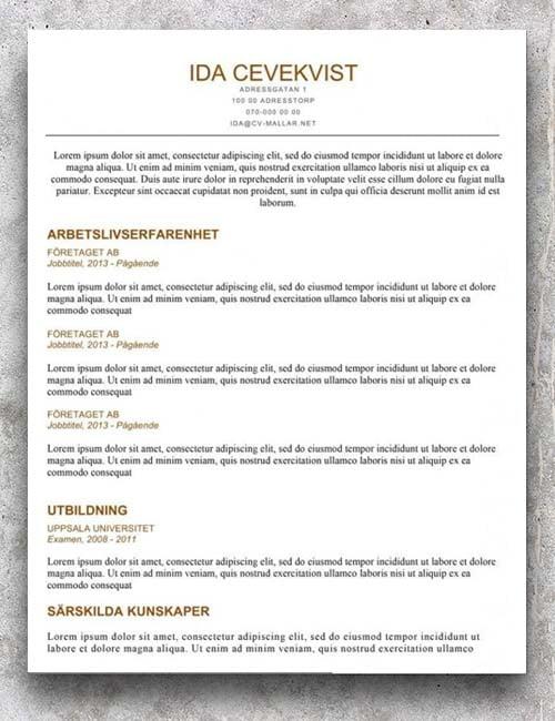 Snygg och enkel CV mall