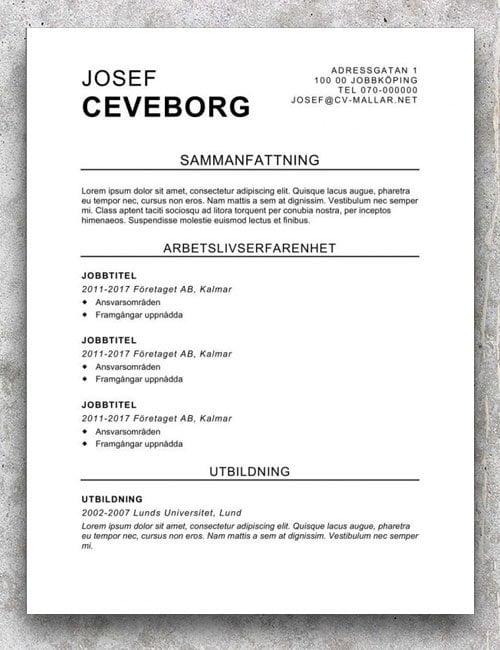 Kraftfull CV