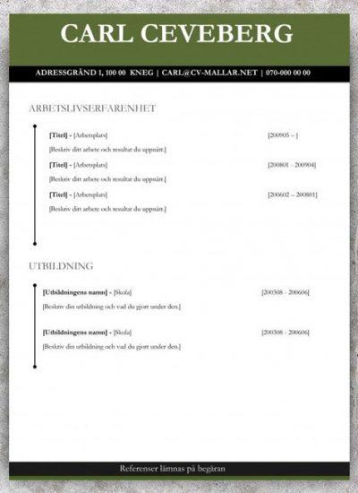 Kronologisk CV mall