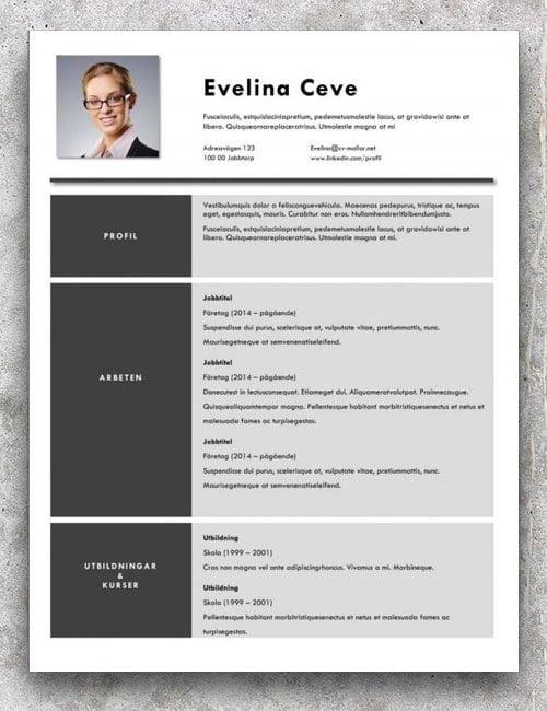 Bästa CV-mallen