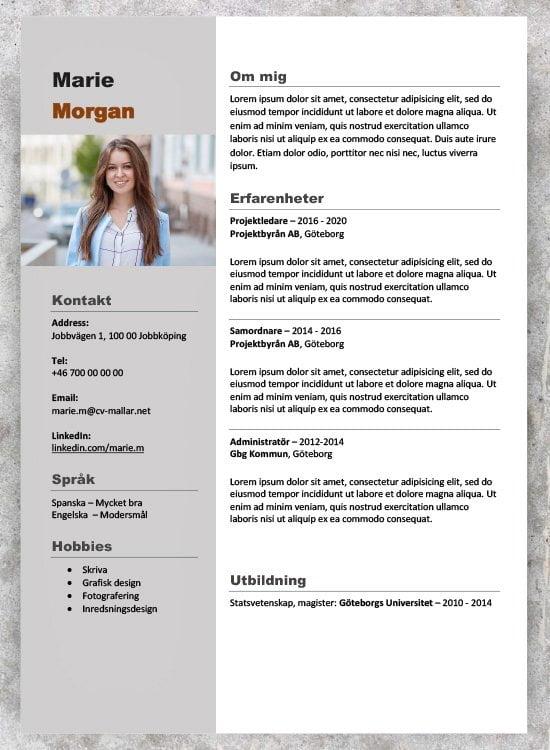 Projektledare CV