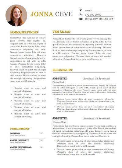 CV mall framgång
